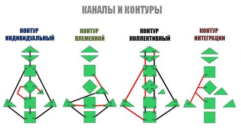 Дизайн человека контуры