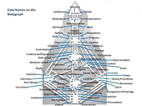 Ворота и каналы в дизайне человека